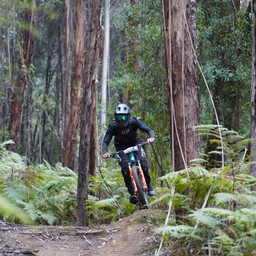 Photo of Mitchell KENNEDY at Narbethong, VIC