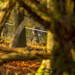 Photo of Daniel MOONEY at Queen Elizabeth Country Park