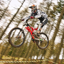 Photo of Neil ARNOLD at Ae Forest