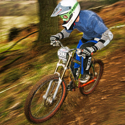 Photo of Martyn PARR at Ae Forest