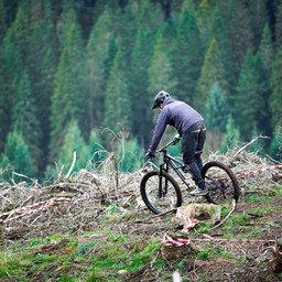 Photo of Stephen HODGSON (mas) at Ae Forest