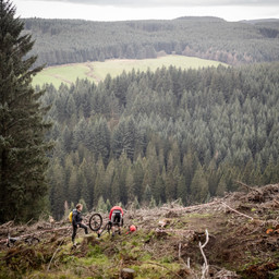 Photo of Murray TOWERS at Ae Forest