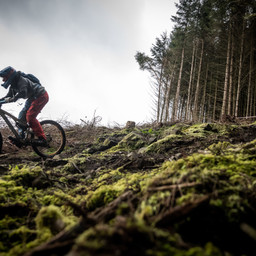 Photo of Troy DODDS at Ae Forest