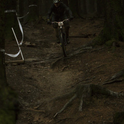 Photo of Will WILLISON at BikePark Wales