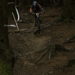 Photo of Connor REES at BikePark Wales