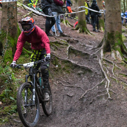 Photo of Alan MCKINSTRY at Forest of Dean