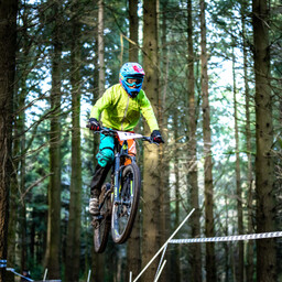 Photo of Peregrine JOLLY at Forest of Dean