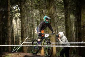 Photo of Suzanne LACEY at Forest of Dean