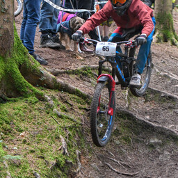 Photo of Henri ARMSTRONG at Forest of Dean