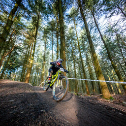 Photo of William DANTER at Forest of Dean