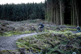 Photo of Peter HOPPER at Ae Forest