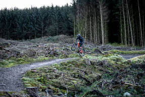 Photo of Andrew CAMPBELL (sen) at Ae Forest
