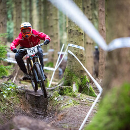 Photo of David PAINE at Forest of Dean