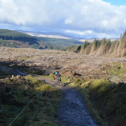 Photo of Kieth RUDD at Ae Forest