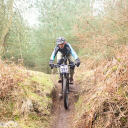 Photo of Rider 597 at Cannock Chase