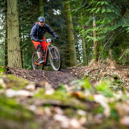 Photo of Mark COLLINGWOOD at Forest of Dean