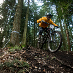 Photo of Tom DRYDEN at Forest of Dean