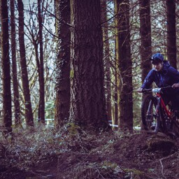 Photo of Tom REEVES at Forest of Dean