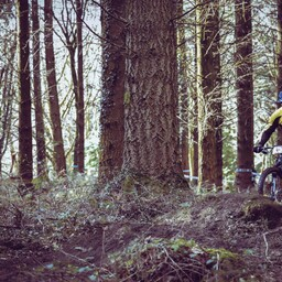 Photo of Owen PRITCHARD at Forest of Dean