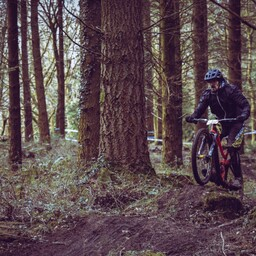 Photo of Tom PEARSON (mas) at Forest of Dean