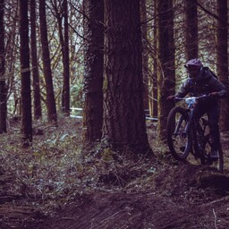 Photo of Steve RODD at Forest of Dean
