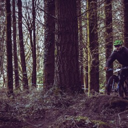 Photo of Chris ANDERSON at Forest of Dean