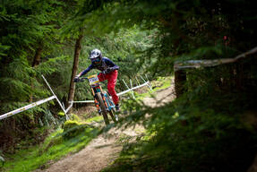 Photo of Will HOLBECHE at Bringewood