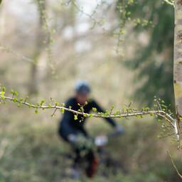 Photo of Morgan SIMPSON at Queen Elizabeth Country Park