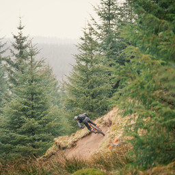 Photo of ? at Gisburn Forest