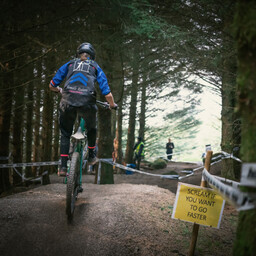 Photo of Rose TEMPEST at Gisburn Forest