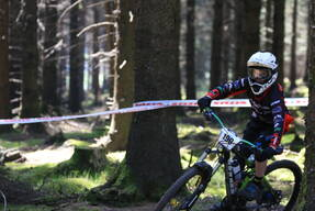 Photo of Callum MORRIS at Ballinastoe Woods, Co. Wicklow