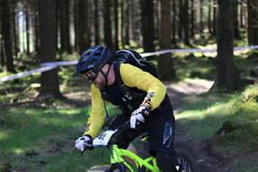 Photo of Stephen BRENNAN at Ballinastoe Woods, Co. Wicklow