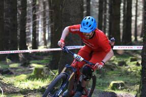 Photo of Nigel GLYNN at Ballinastoe Woods, Co. Wicklow