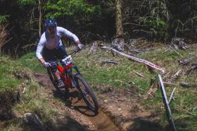 Photo of Simone CHIESA at Ballinastoe Woods