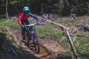 Photo of Kai ARTHUR at Ballinastoe Woods