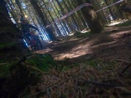 Photo of Alan REDMOND at Ballinastoe Woods