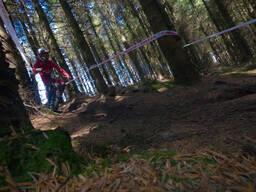 Photo of Ross ENNIS at Ballinastoe Woods, Co. Wicklow