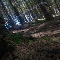 Photo of Ronan SCULLION at Ballinastoe Woods, Co. Wicklow