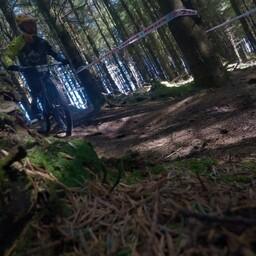 Photo of Conan ABEL at Ballinastoe Woods, Co. Wicklow