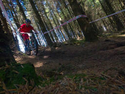 Photo of Anthony DUNNE at Ballinastoe Woods, Co. Wicklow