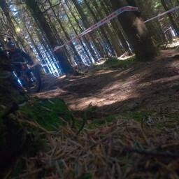 Photo of Al REDMOND at Ballinastoe Woods, Co. Wicklow