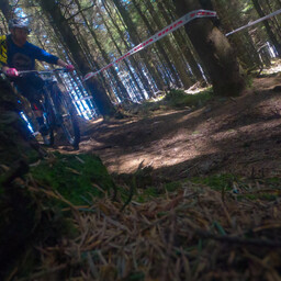 Photo of Rory O'DONNELL (mas) at Ballinastoe Woods, Co. Wicklow