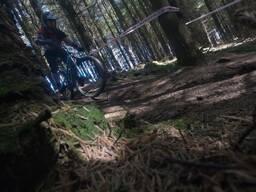 Photo of Mantas VIKNIUS at Ballinastoe Woods, Co. Wicklow