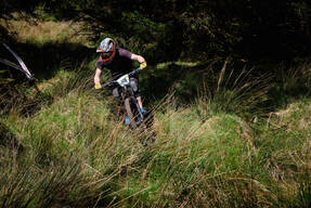 Photo of Damien MCCORMICK at Ballinastoe Woods