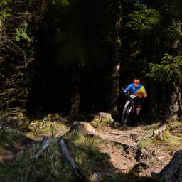 Photo of Mark TIERNAN at Ballinastoe Woods, Co. Wicklow