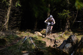 Photo of Daniel FINEGAN at Ballinastoe Woods, Co. Wicklow