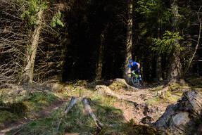 Photo of Ciaran CASSIDY at Ballinastoe Woods, Co. Wicklow