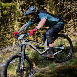 Photo of Declan CURTIN at Ballinastoe Woods, Co. Wicklow