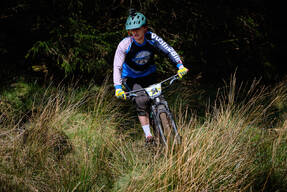 Photo of Denis CAHILL at Ballinastoe Woods, Co. Wicklow