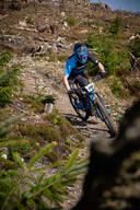 Photo of Ronan O SULLIVAN at Ballinastoe Woods, Co. Wicklow